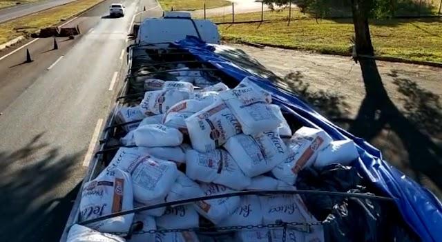 Policiais apreendem carregamento com mais de 800 kg maconha em meio a carga de farinha importada da Argentina na BR-277