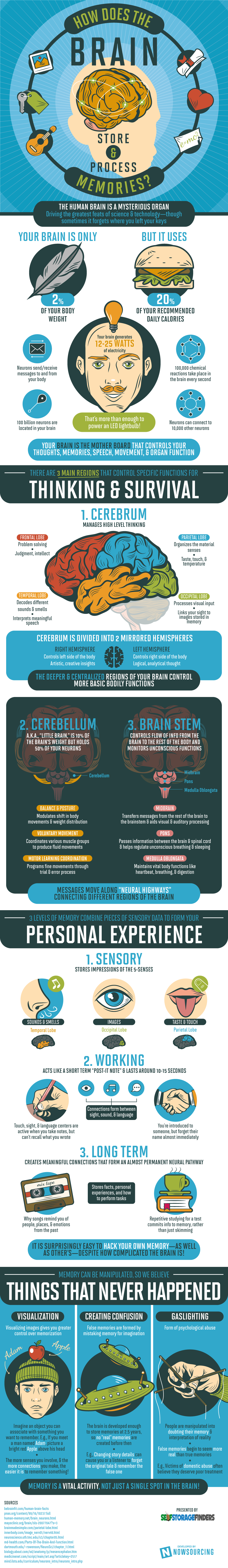 How Your Brain Stores and Processes Memories - #infographic
