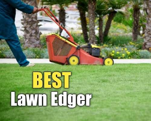 Best Lawn Edger
