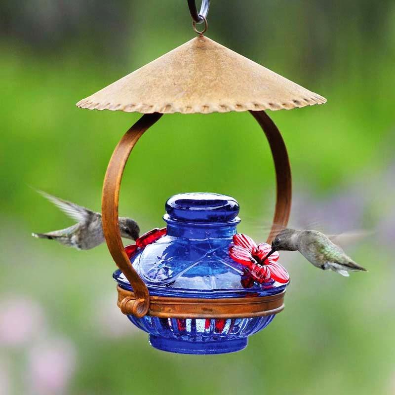 Natural Hummingbird Feeder Food