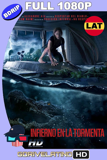 Infierno en la Tormenta (2019) BDRip 1080p Latino-Ingles MKV