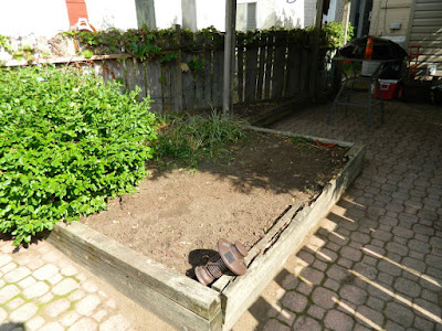 Palmerston Little Italy Toronto Back Yard Garden Cleanup after by Paul Jung Gardening Services