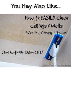 http://proverbsthirtyonewoman.blogspot.com/2014/09/how-to-easily-clean-ceilings-walls-even.html#.WIKHq33krcQ