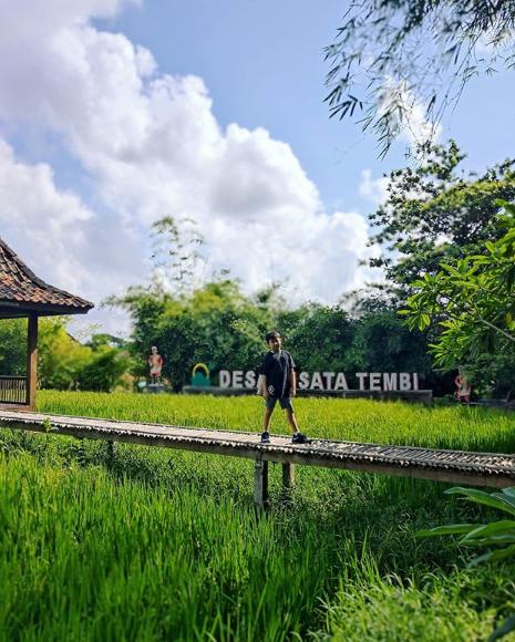 wisata baru Desa Wisata Tembi jogja