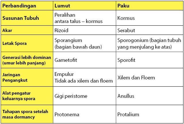 Perbedaan daur hidup tumbuhan lumut dan tumbuhan paku