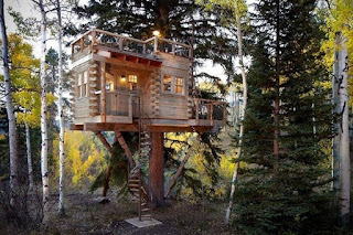 The-Most-Beautiful-Tree-House-Plans-Couple