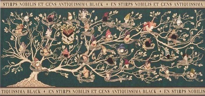 O Mundo Mágico de Harry Potter: Árvore genealógica da família Black