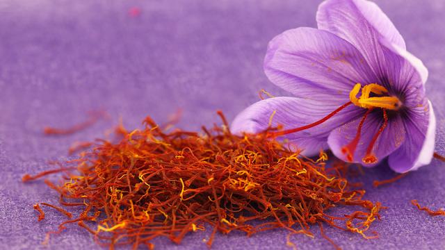manfaat saffron untuk kesehatan