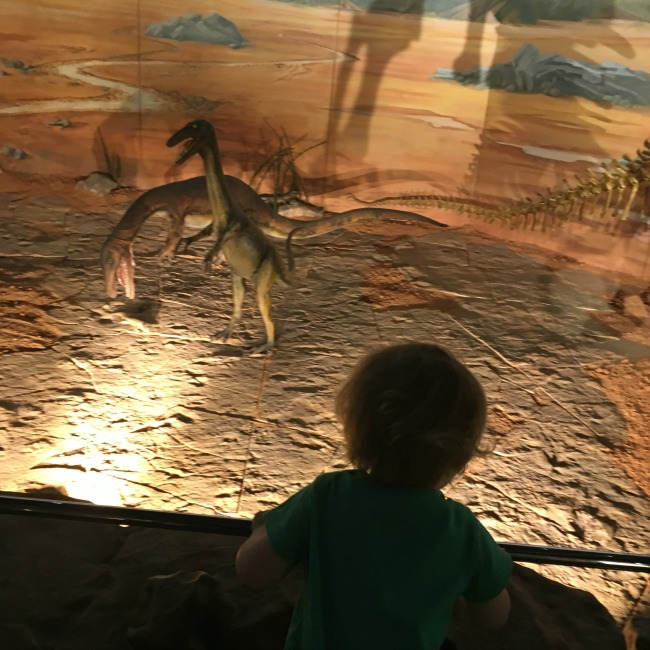 toddler-and-dinosaurs-national-museum-cardiff