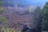 Matin brumeux dans la Vallée Chaude dans les Trois Pignons