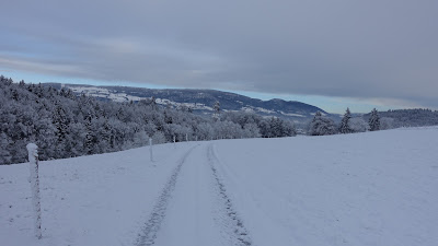 Wangenried, Siggeri