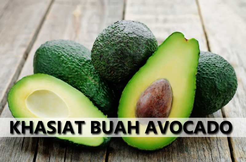 Khasiat Buah Avocado