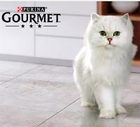 "Concorso Purina ""Memory"" : vinci gratis 200 forniture Gourmet"