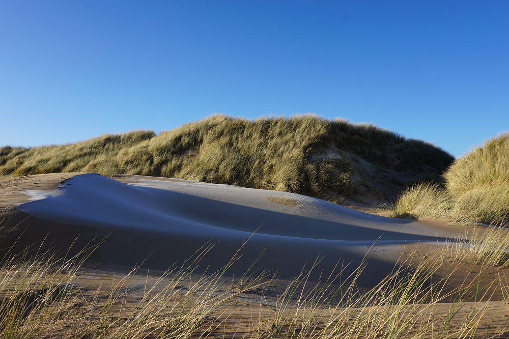 Sand dunes on frosty day