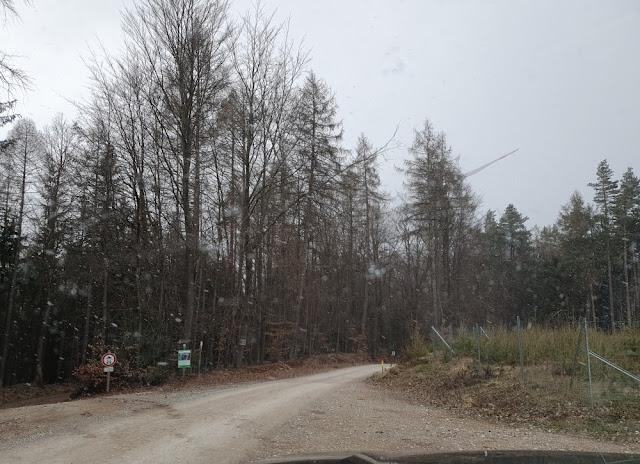 Straße von Lindenhardt zur Rotmainquelle