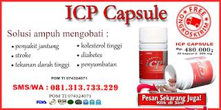 http://kangadesunandar.blogspot.co.id/p/obat-jantung-icp-capsule.html