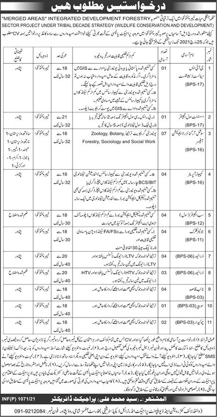 Forest Department Jobs 2021 - Jobs in Forest Department 2021 - Forestry Careers - Forestry Hiring - Forestry Recruitment - Forestry Jobs Near Me - KPK Forest Department Jobs 2021