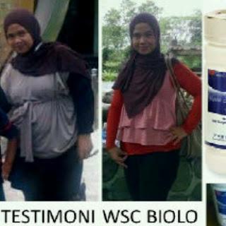 wsc-biolo-obat-pembakar-lemak