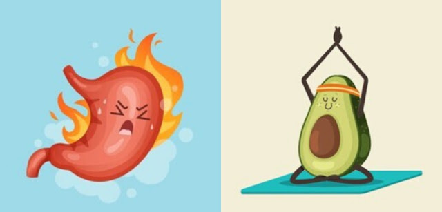 Is Avocado Good or Bad for Acid Reflux