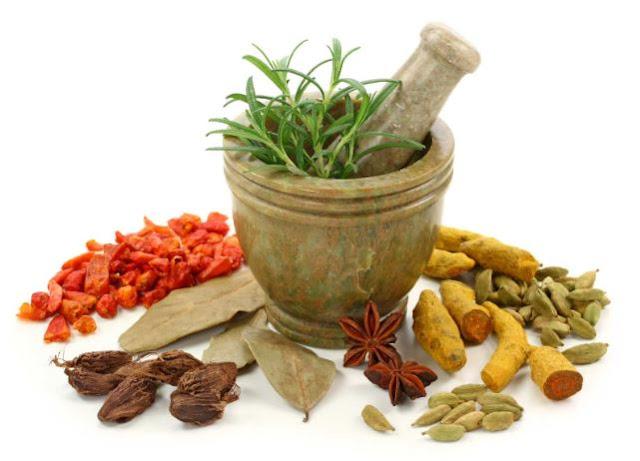10 نباتات طبية يمكنها إنقاذ حياتك