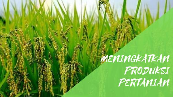 Penerapan Teknologi Dalam Meningkatkan Produksi Pertanian