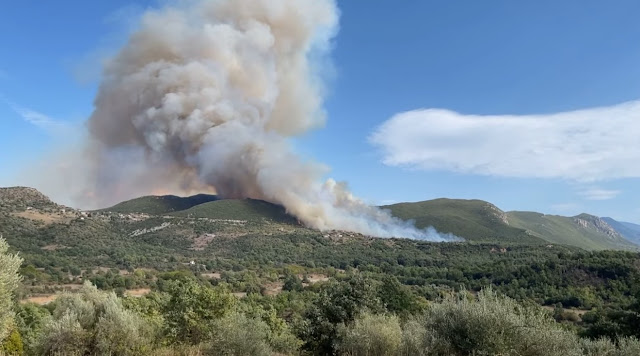 Μεγάλη φωτιά στη Μεγαλόπολη - 6 αεροπλάνα και 2 ελικόπτερα στη μάχη με τις φλόγες