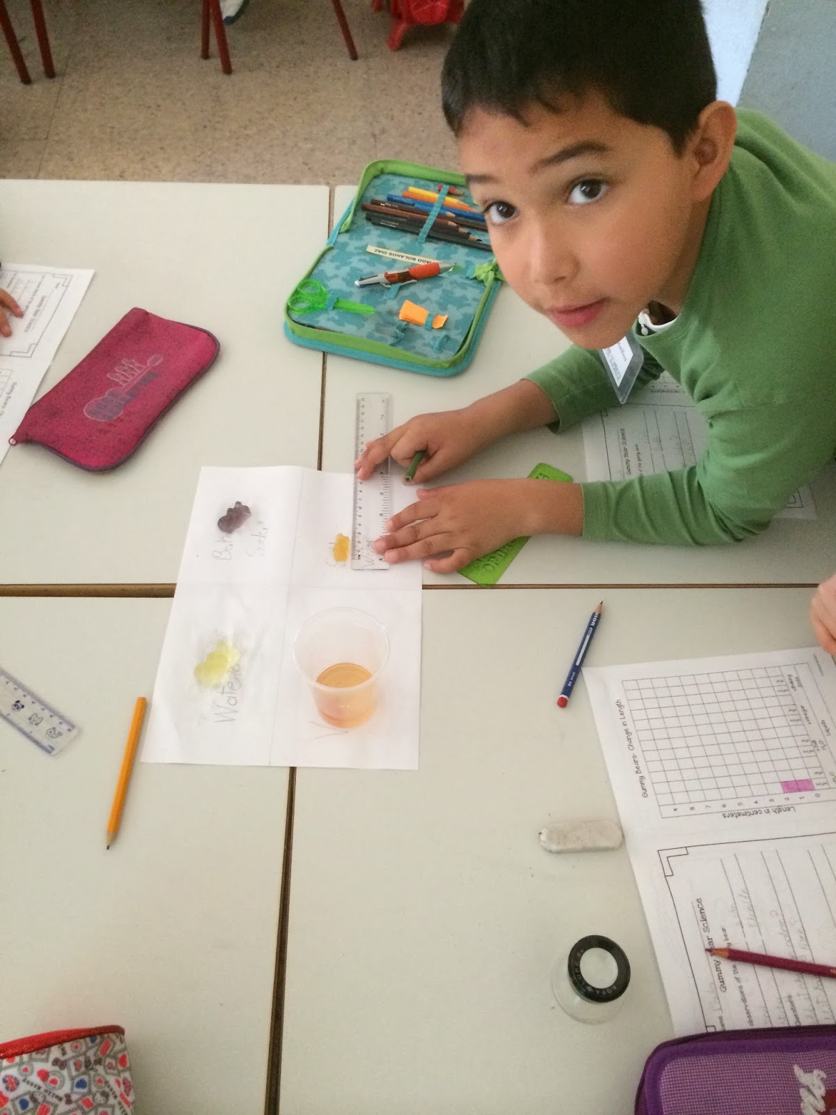 The English Cubby Gummy Bears Experiment