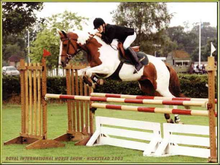 Royal International Horse Show, Hickstead 2003