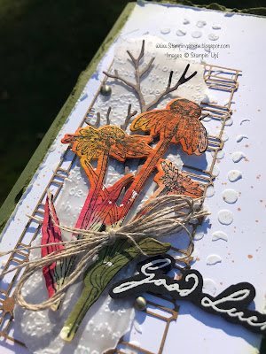 mixed media card using stampin up nature's harvest
