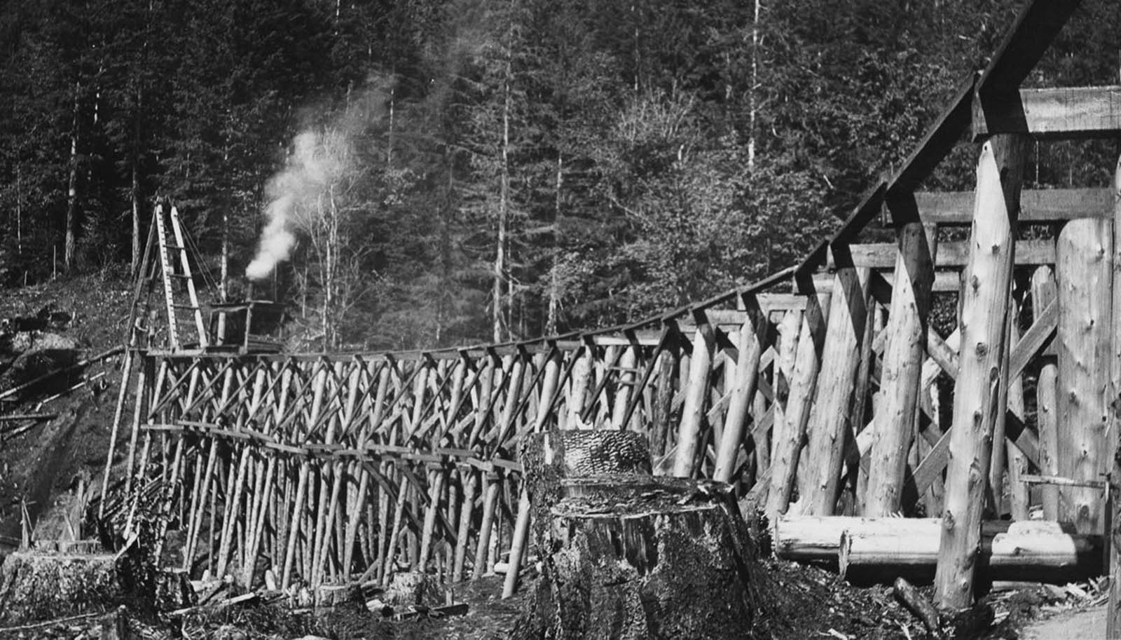 A trestle bridge under construction. 1930.