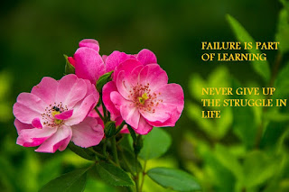 FAILURE IS PART OF LEARNING | NEVER GIVE UP THE STRUGGLE IN LIFE .