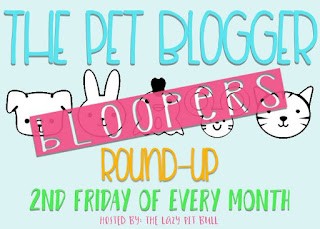 Bloopers! Bloopers! Getcha Bloopers!