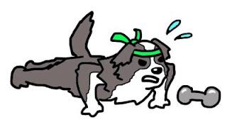 ginastica para cães desenho