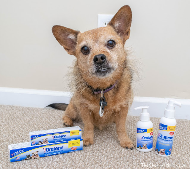 Jada with oratene products