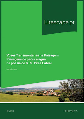 https://run.unl.pt/bitstream/10362/12336/1/VozesTransmontanasPaisagem.pdf