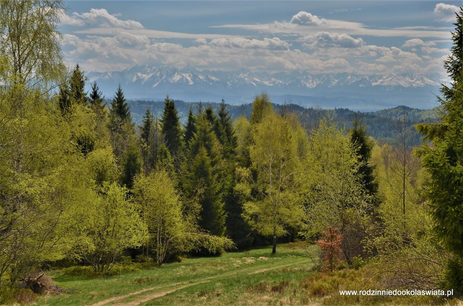 Najpiękniejsze miejsca oraz szlaki w Gorcach