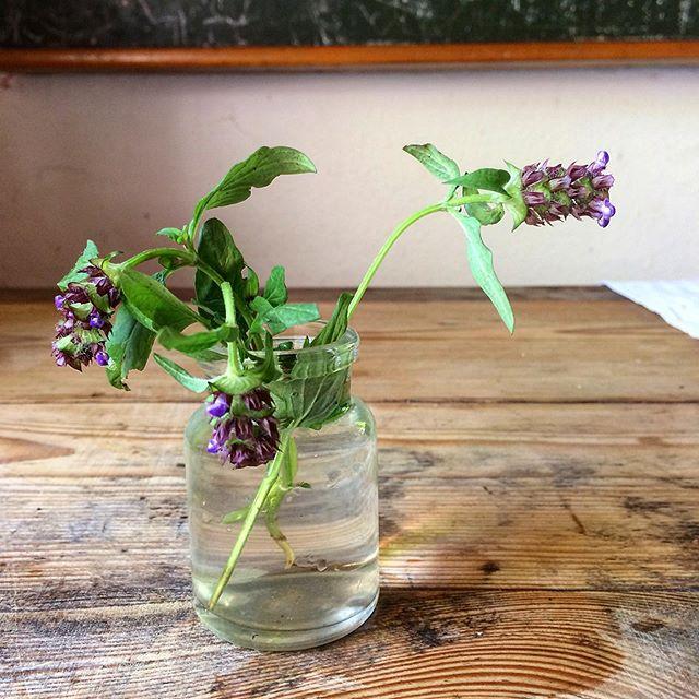 die guten Dinge Blog Freitagsblumen