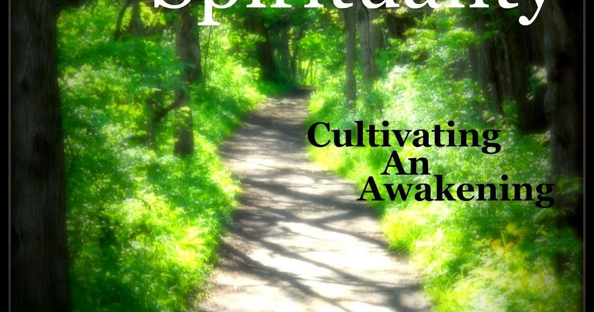 Everyday Spirituality: Everyday Spirituality: Cultivating An Awakening