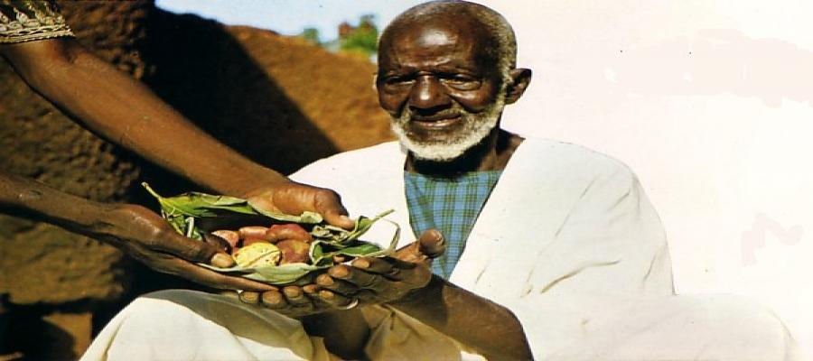 Culture, coutume, tradition, noix, cola, cérémonie, mariage, funérailles, fruit, remède, vertus, hygiène, digestion, LEUKSENEGAL, Dakar, Sénégal, Afrique