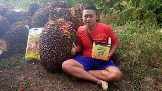 http://www.distributorpupuknasa.com/2020/06/agen-pupuk-nasa-deli-serdang-medan.html