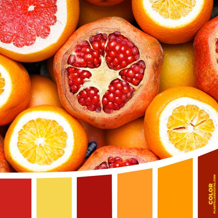 color_523