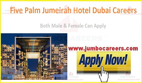 Hotel jobs vacancies New, Available hotel jobs in UAE,