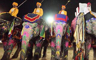 Elephant Polo Match
