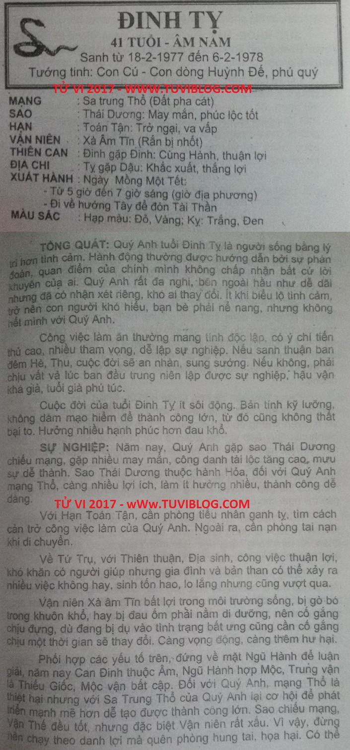 Tu vi 2017 Dinh Ty 1977 nam mang