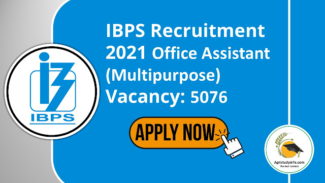 """Read more about the article IBPS Recruitment 2021 Office Assistant Government Jobs in Across India Any Bachelors Degree<small class=""""""""> Apply Before 2021-06-28</small>"""