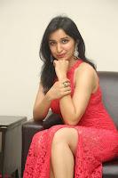 Sakshi Kakkar in Red Legsplit Sleeveless Gown at Dare movie Press meet ~  Exclusive 041.JPG