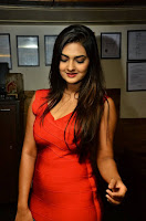Neha Deshpande Stills At Barbeque Nation Cake Mixing Ceremony 2017 08.jpg
