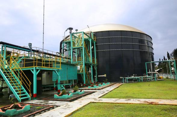 Tekan Produksi Gas Rumah Kaca, Ini yang Dilakukan Perusahaan Produsen Minyak Sawit Sukanto Tanoto