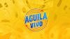 Águila en Vivo presenta a Paola Jara y Jessi Uribe en un concierto virtual por el Chocó