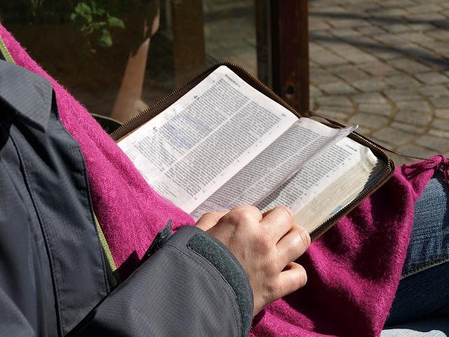 Kädet pitelevät Raamattua sylissä keväisessä ulkoilmassa, kuva: meneya / Pixabay.com.